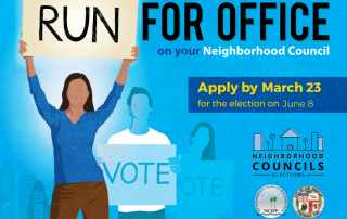 Run for office